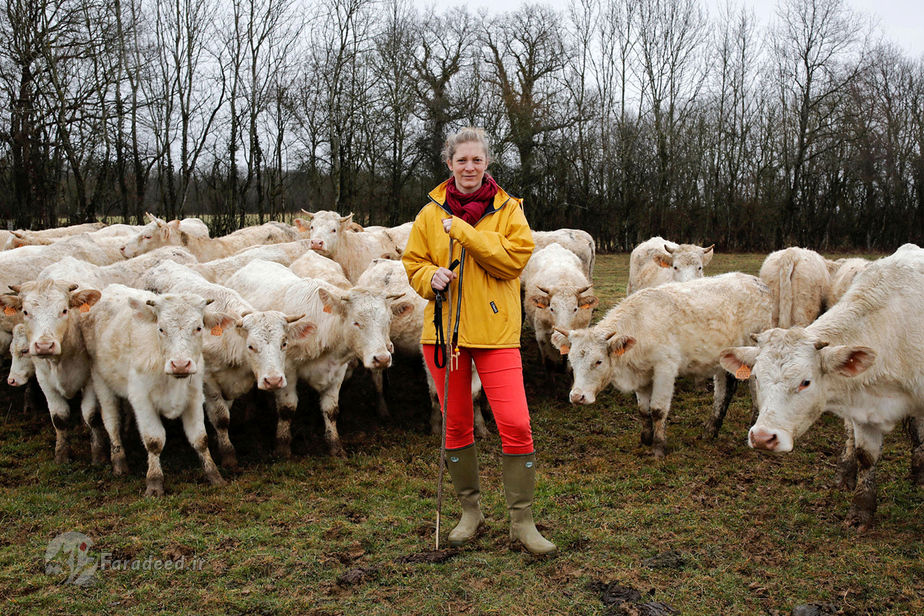 امیلی جینین، 37 ساله، پرورش دهنده گاو، فرانسه